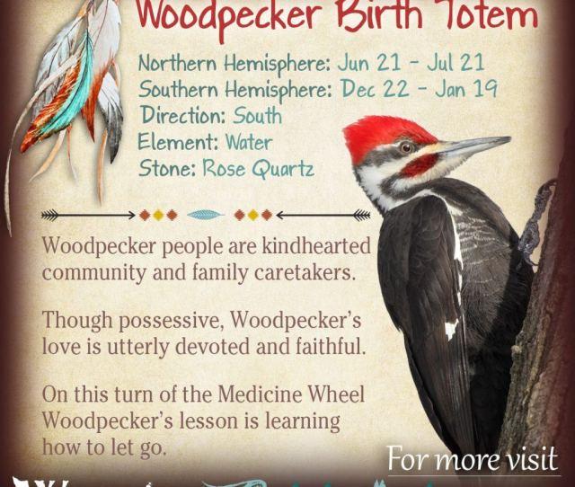 Woodpecker Native American Zodiac Sign Birth Totem X