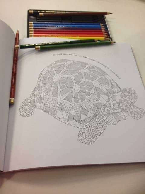 Adult colouring in book