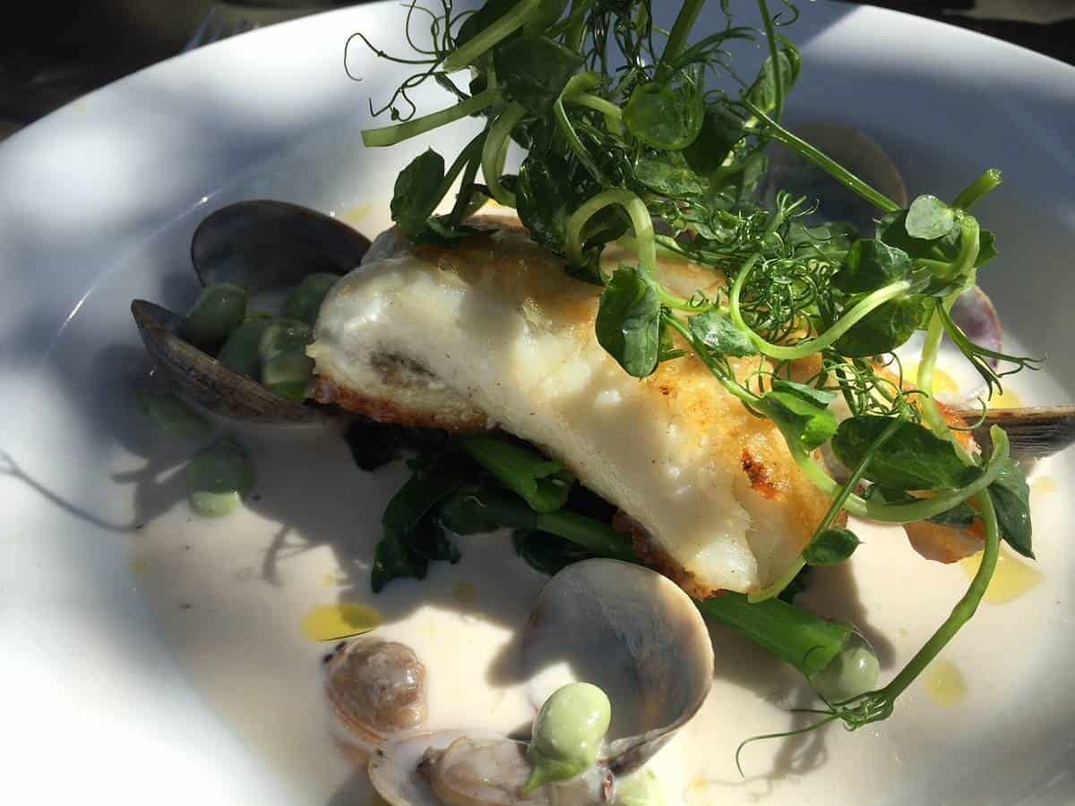 Fillet of brill with clams at Petersham Nurseries
