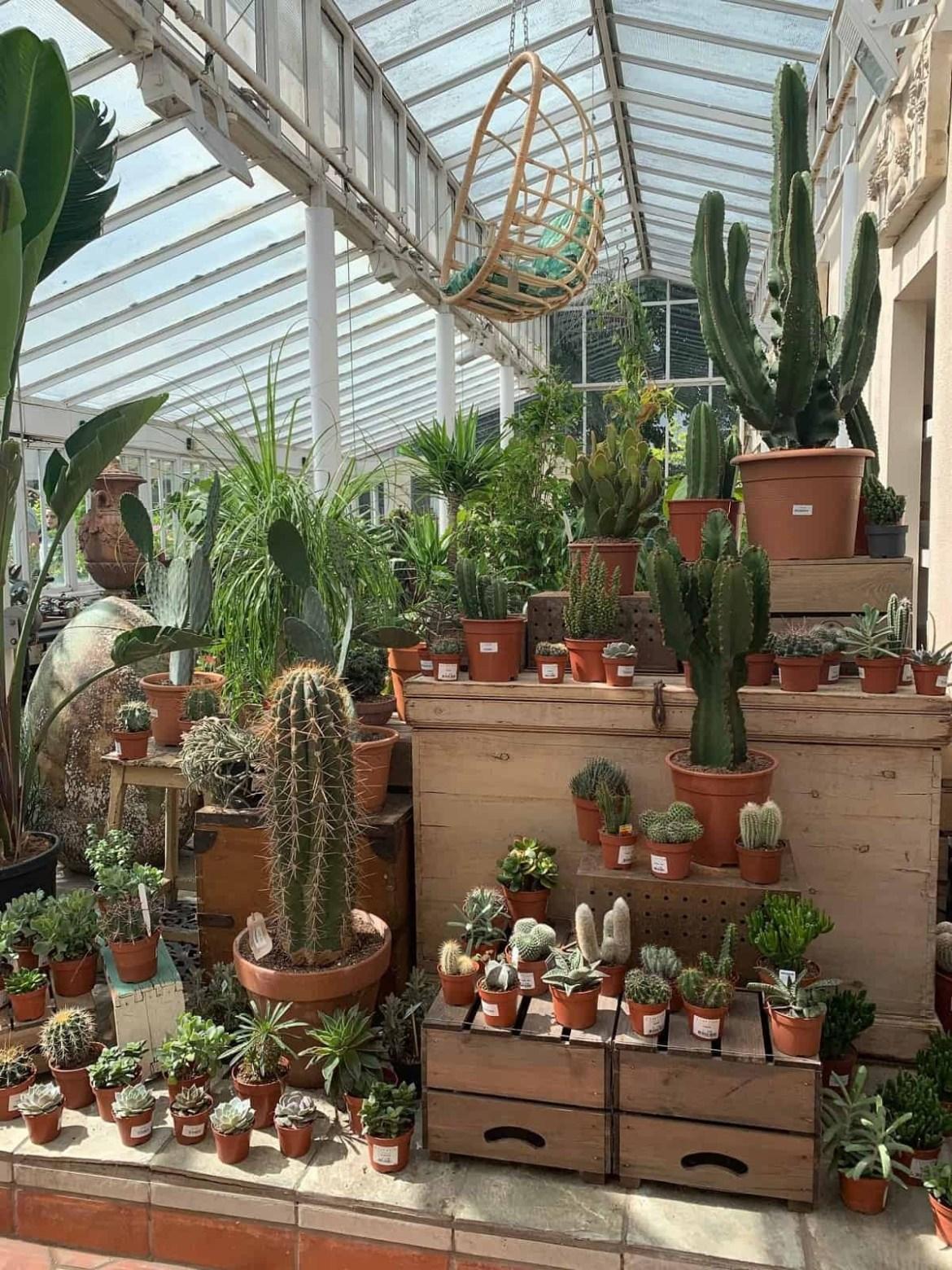 Clifton Nurseries in London