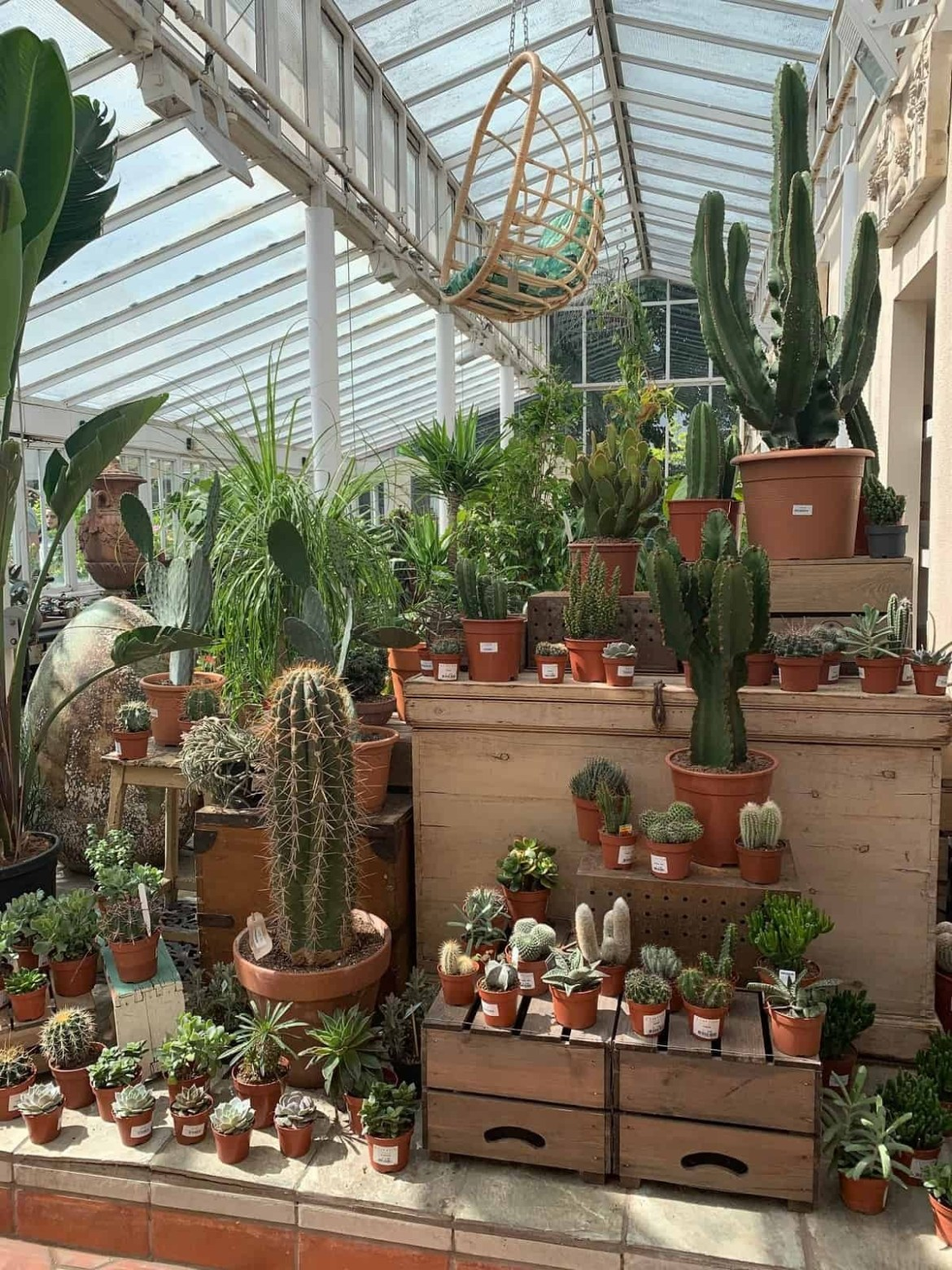 Clifton Nurseries in London