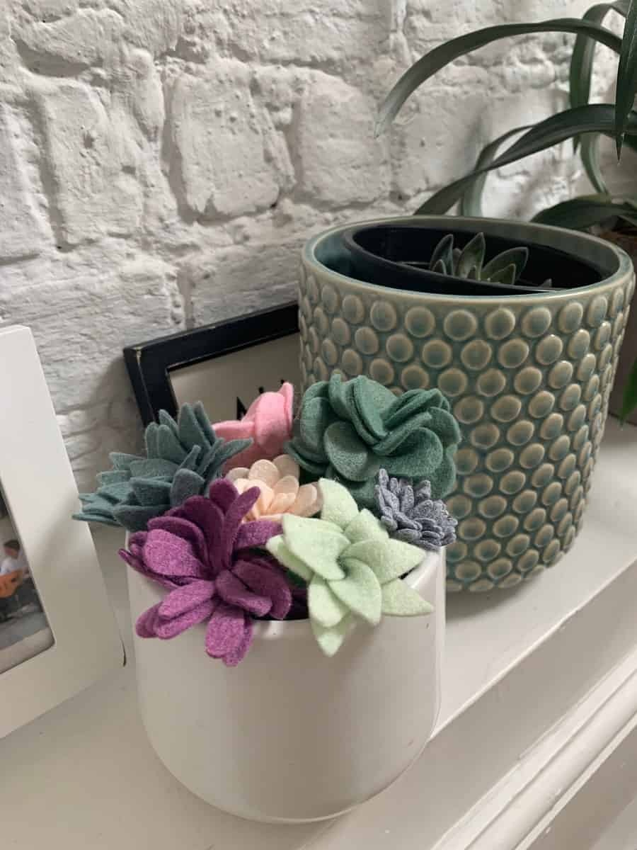 Colourful felt succulents in a white pot