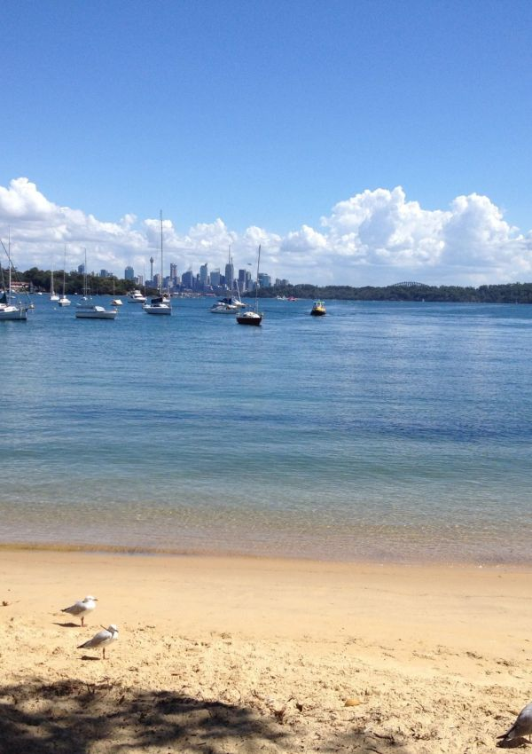 Watsons Bay and Baseball in Sydney