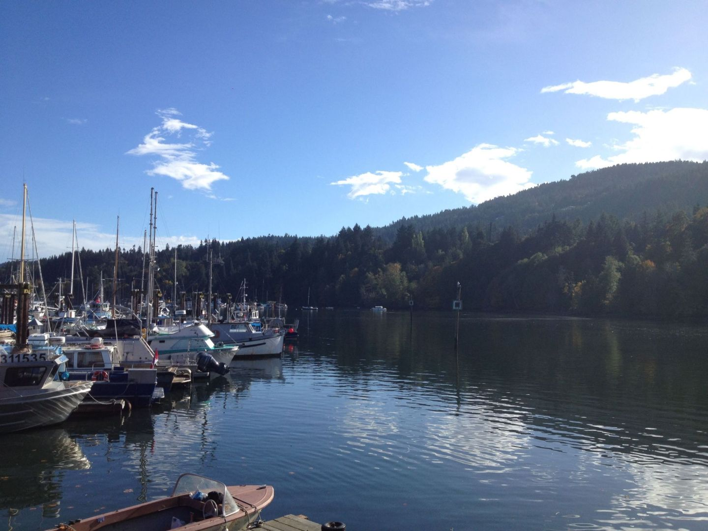 Salt Spring Harbour, British Columbia