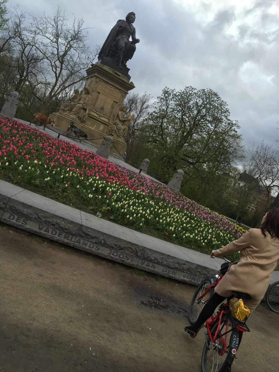 Cycling in Vondelpark