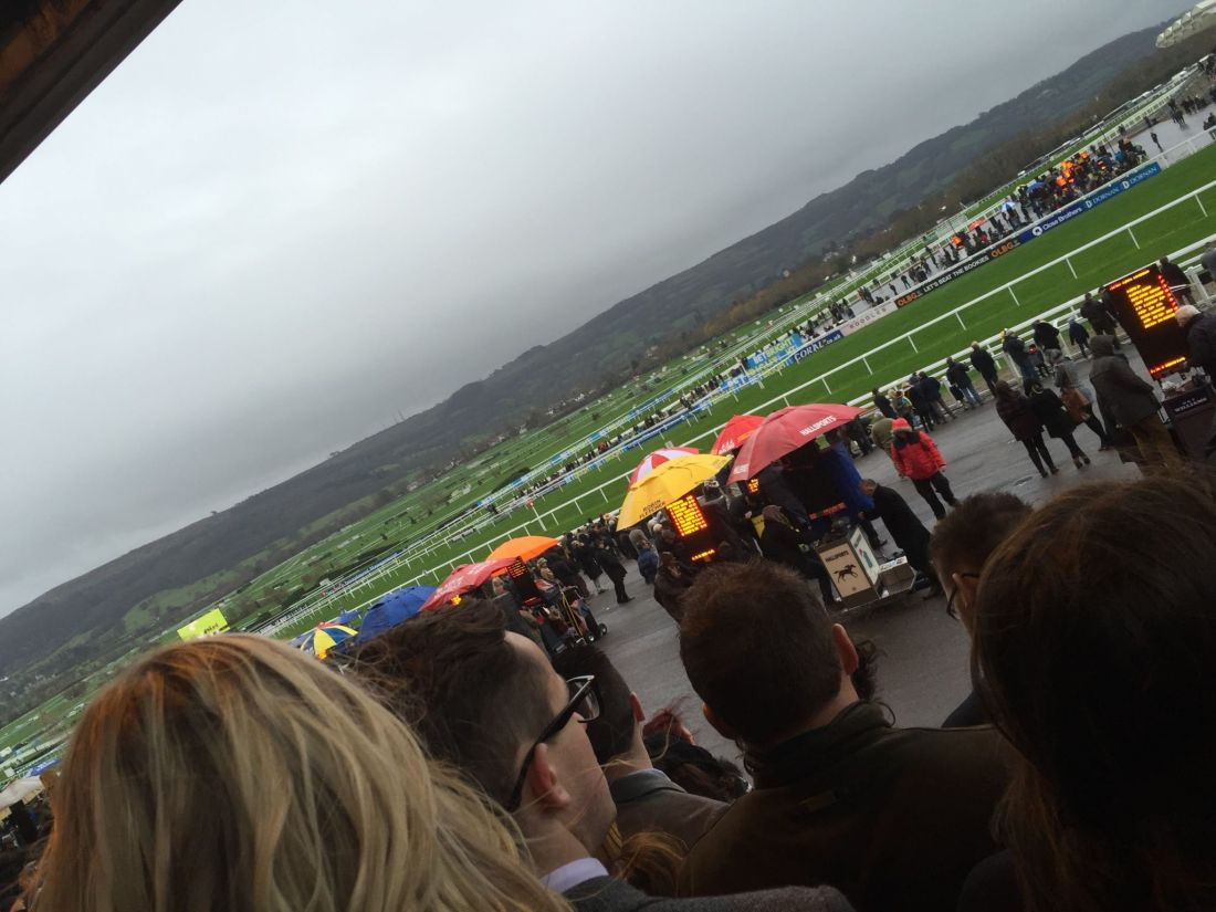 New Year's Day at Cheltenham Races