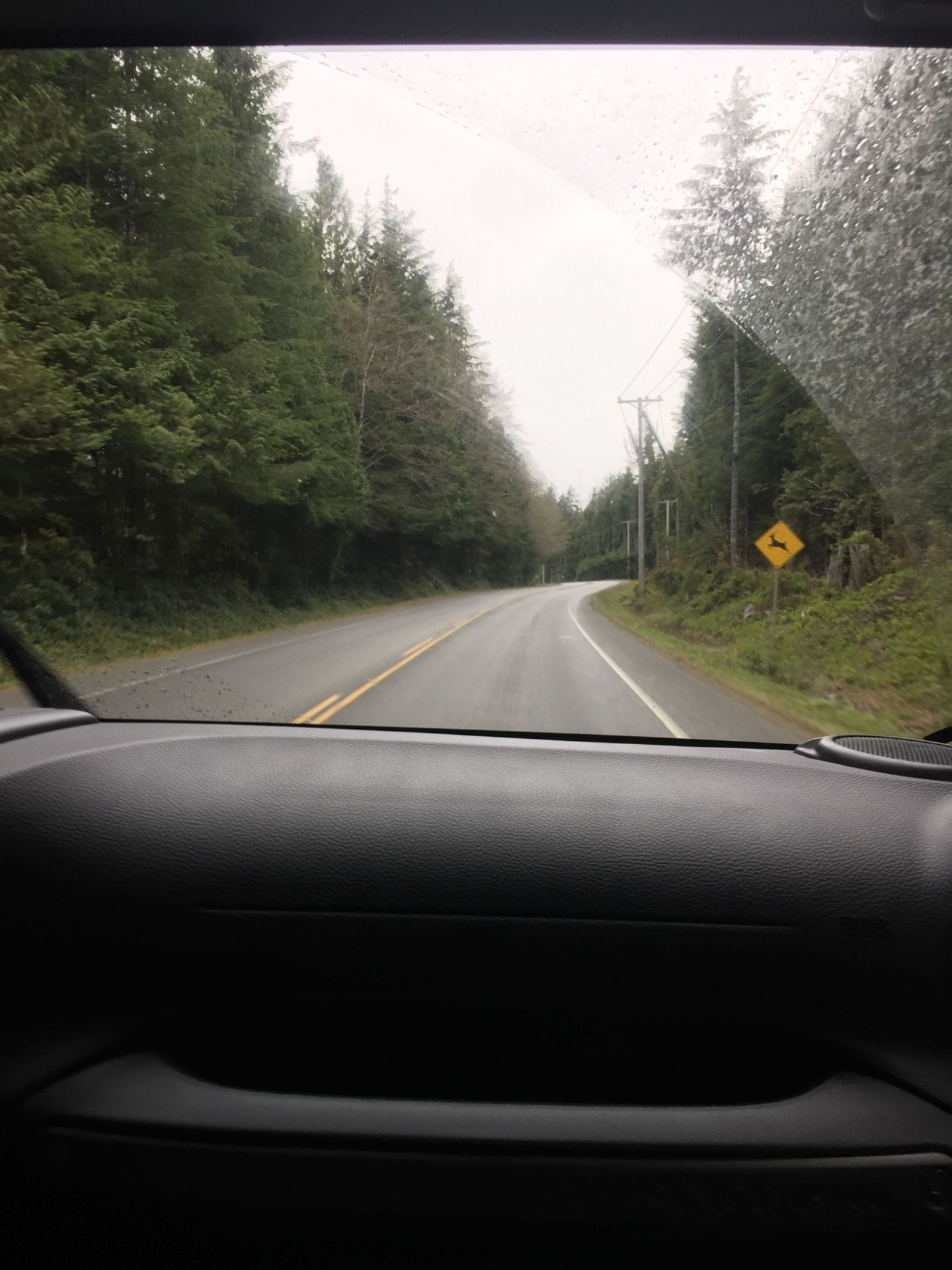 Driving through Pacific Rim National Park, Ucluelet