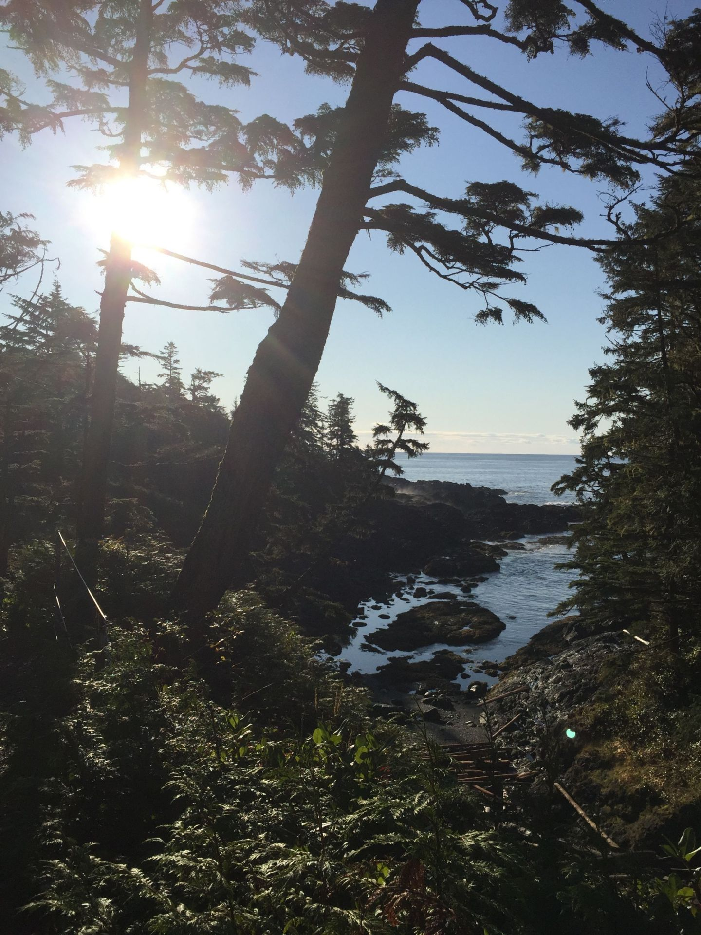 Wild Pacific Trail, Ucluelet on Vancouver Island