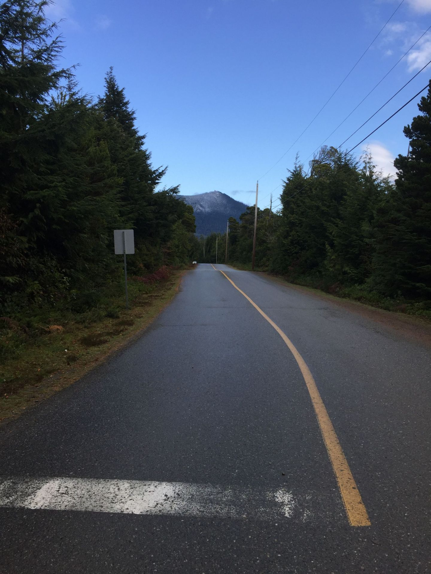 A road to the mountains near Ucluelet