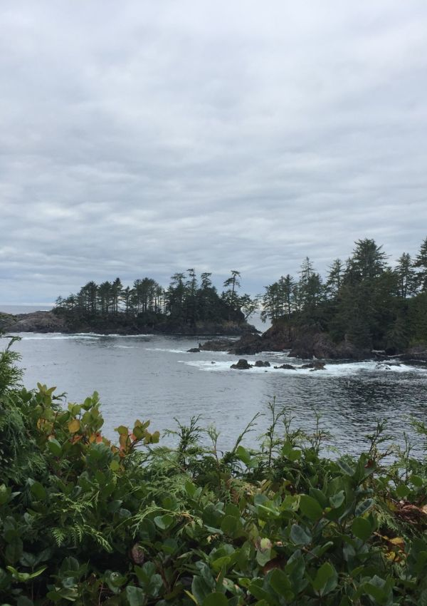 The ocean from the Wild Pacific Trail, Vancouver Island