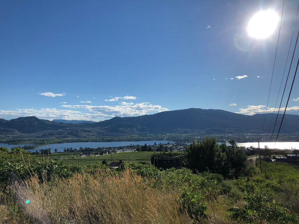 The sun shines across the vineyards in Osoyoos, British Columbia