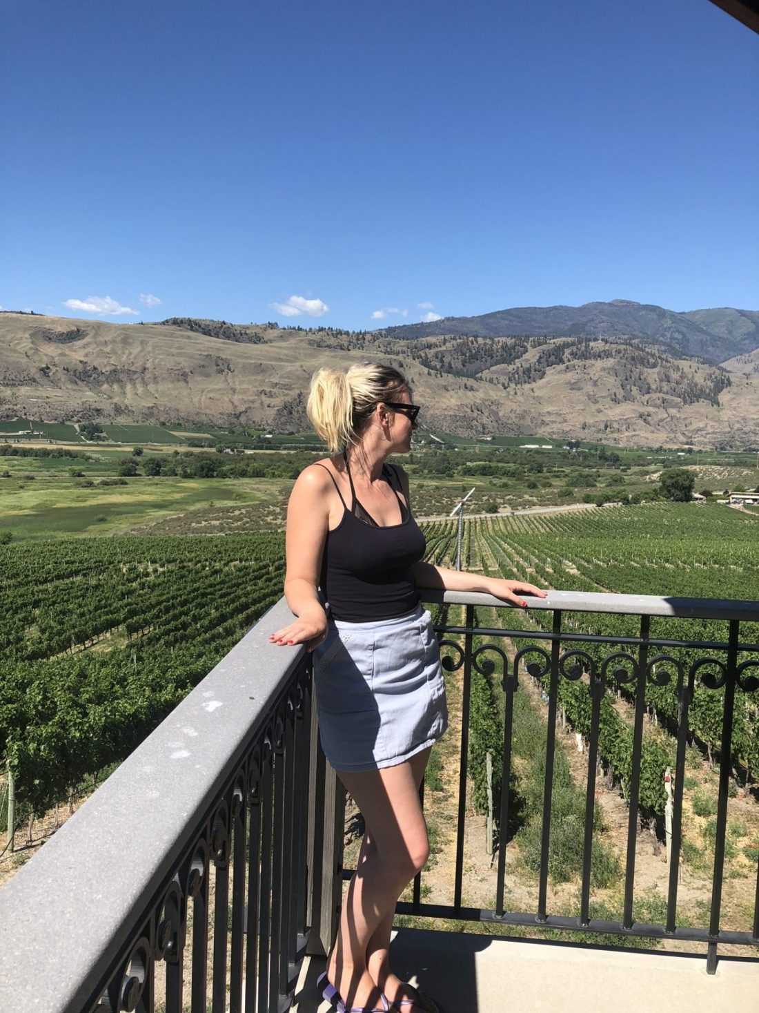 At Burrowing Owl Winery in the Okanagan