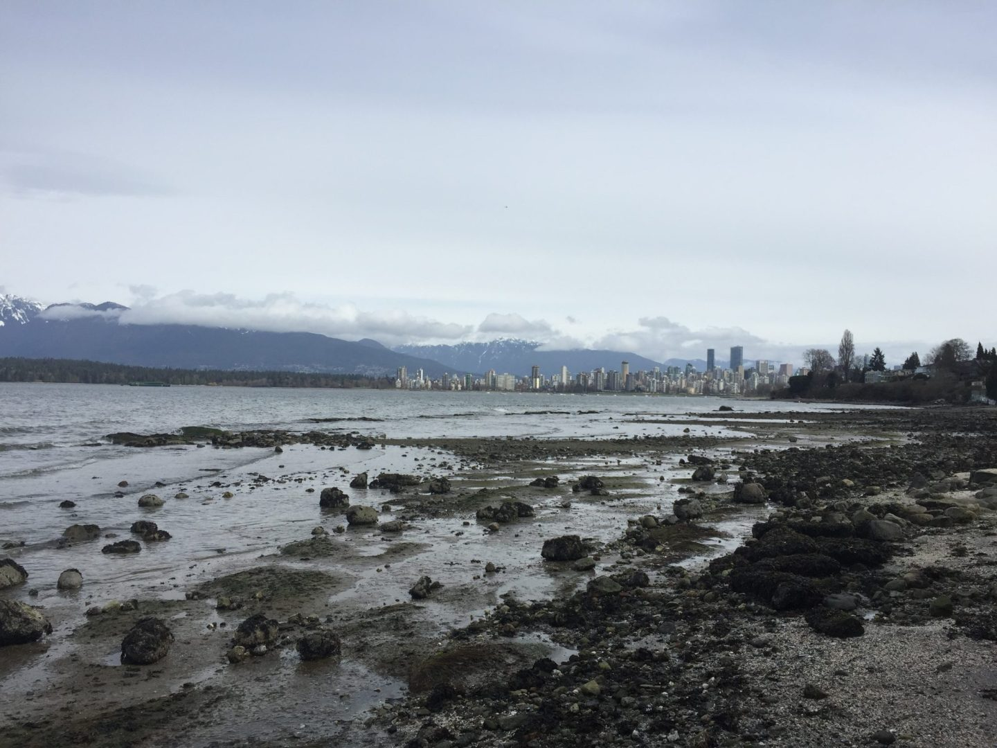 Is Vancouver Really Such a Liveable City?