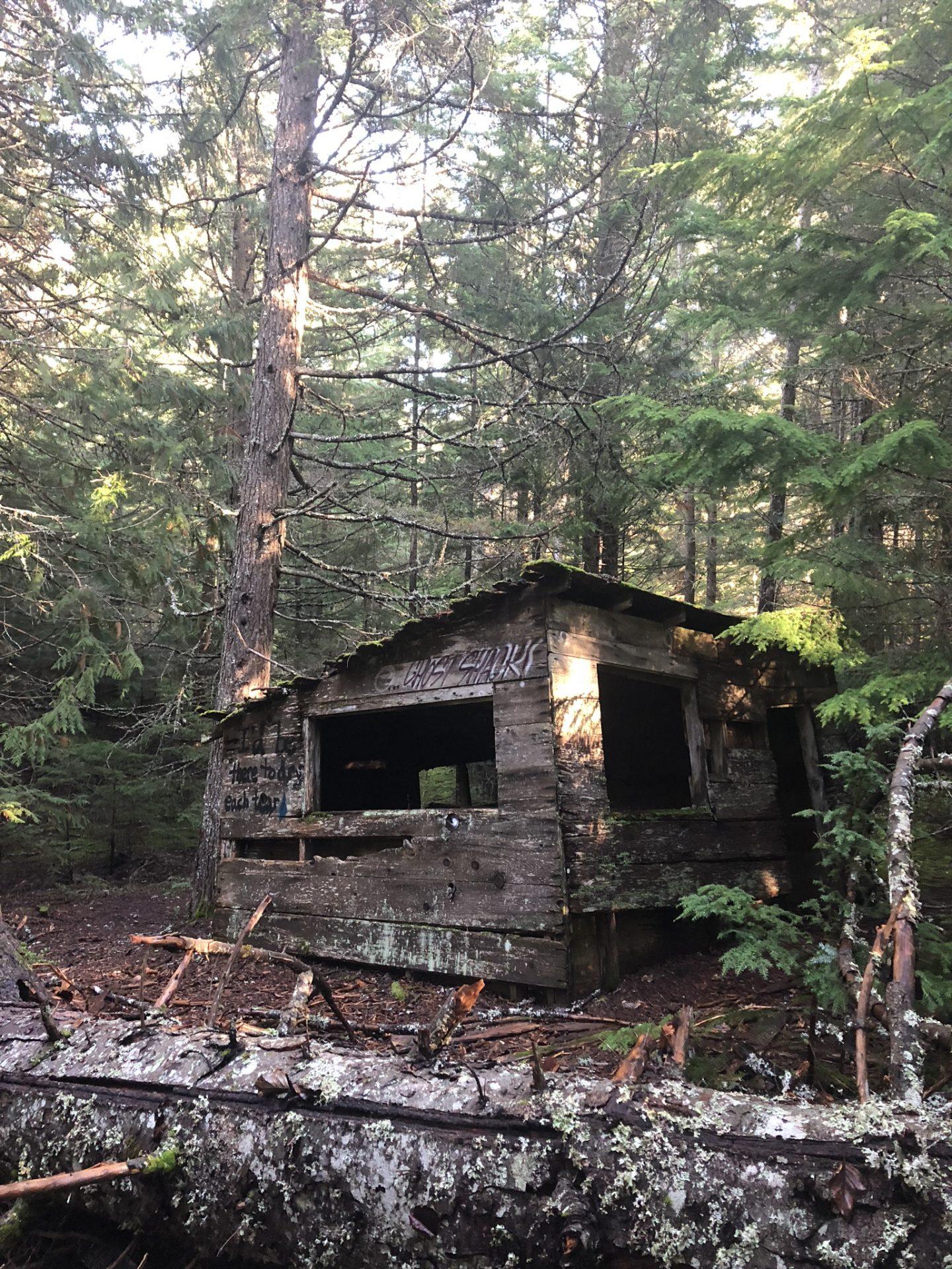 Abandoned house in the forest in Parkhurst near Whistler