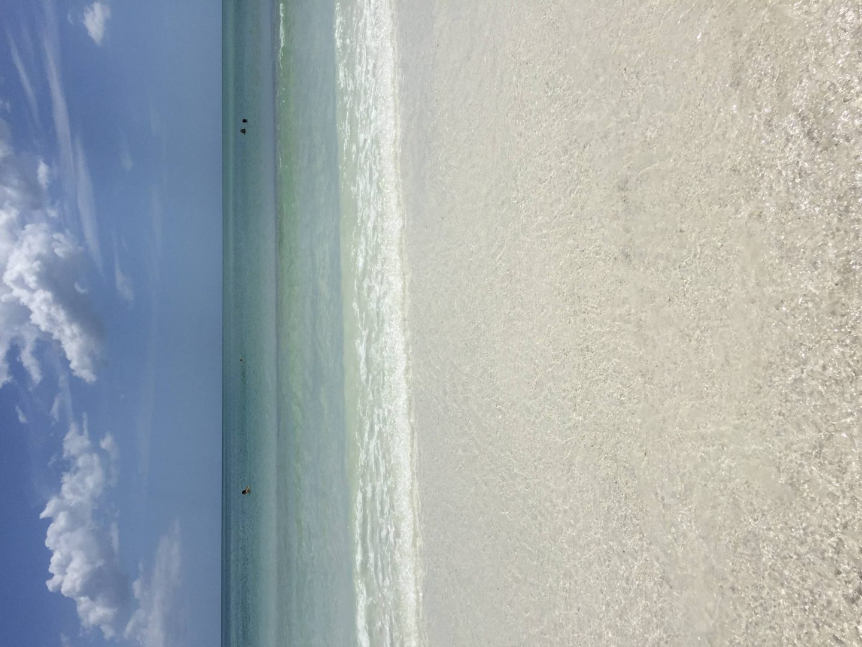 My favourite beaches: Siesta Key