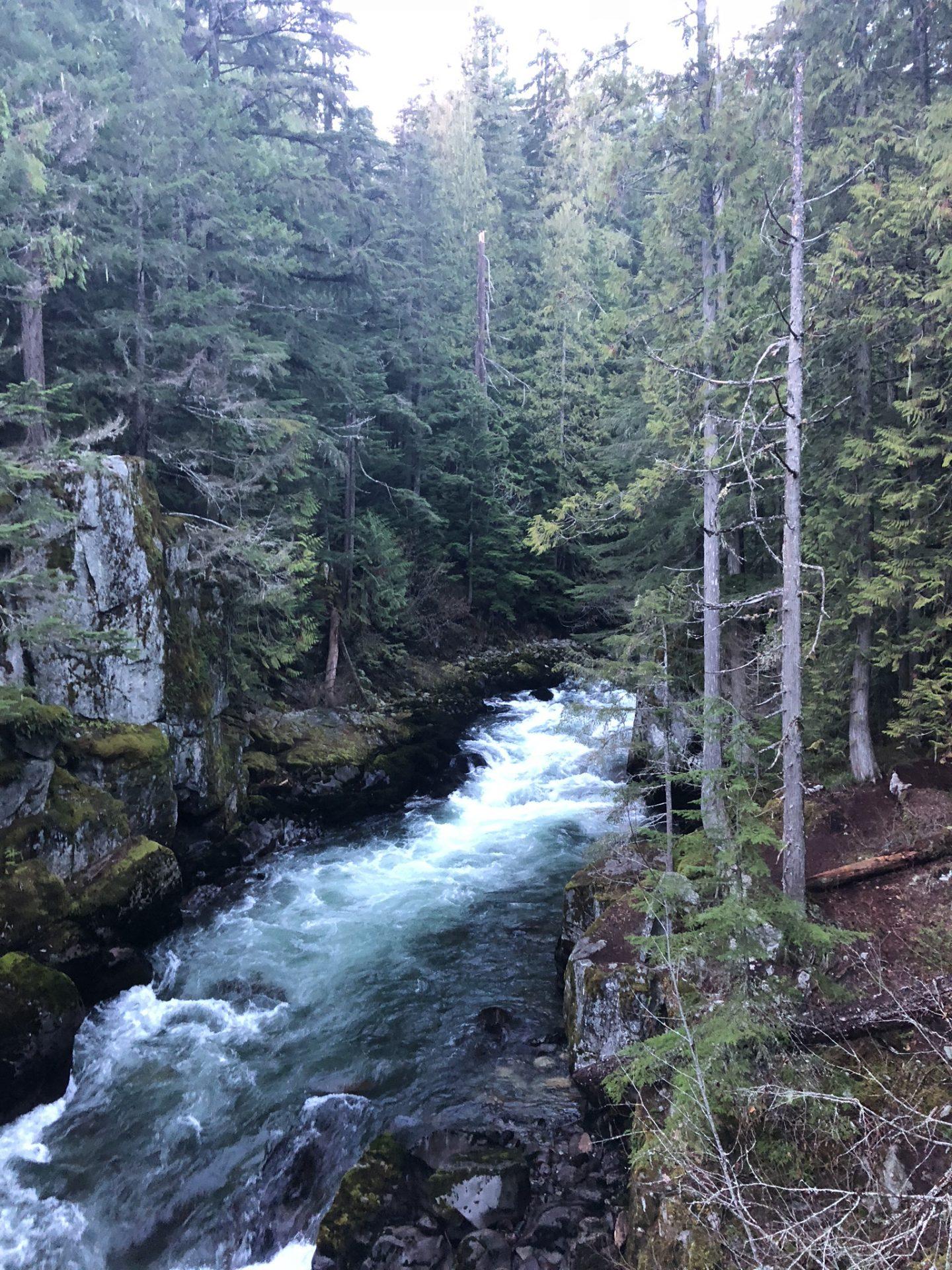 Stream at Trainwreck, Whistler