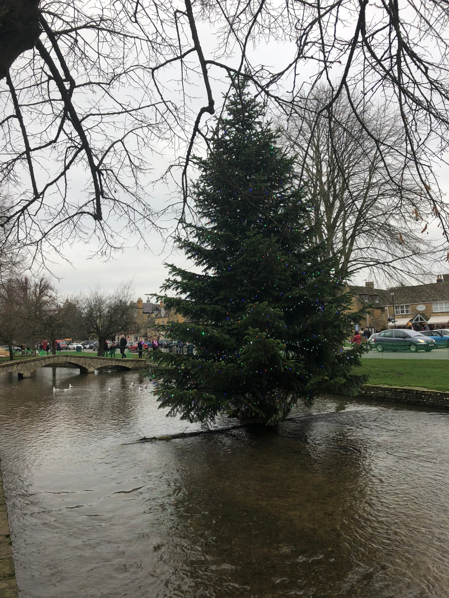 Christmas tree at Bourton on the Water