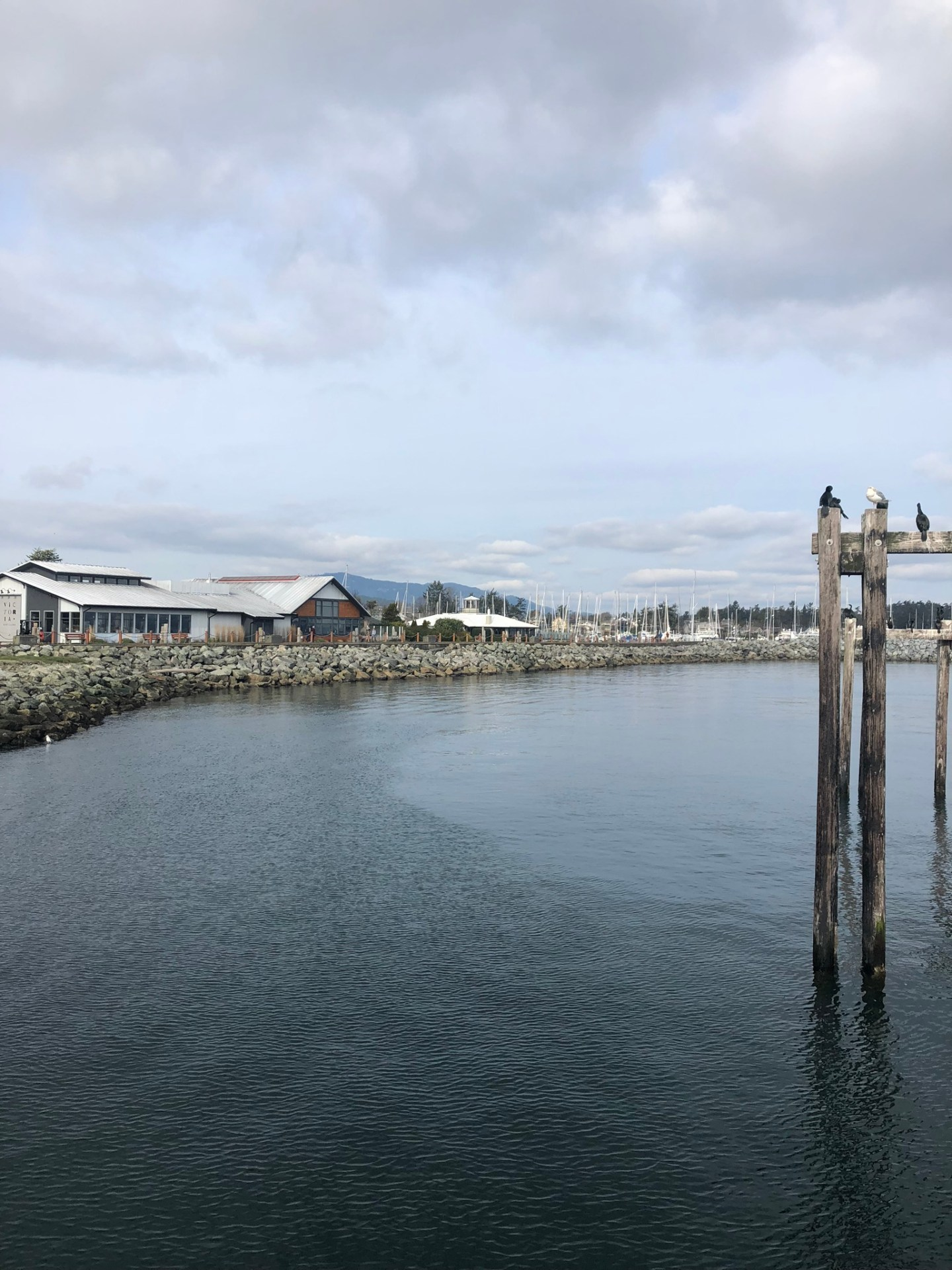 Coastal views from Sidney, Vancouver Island