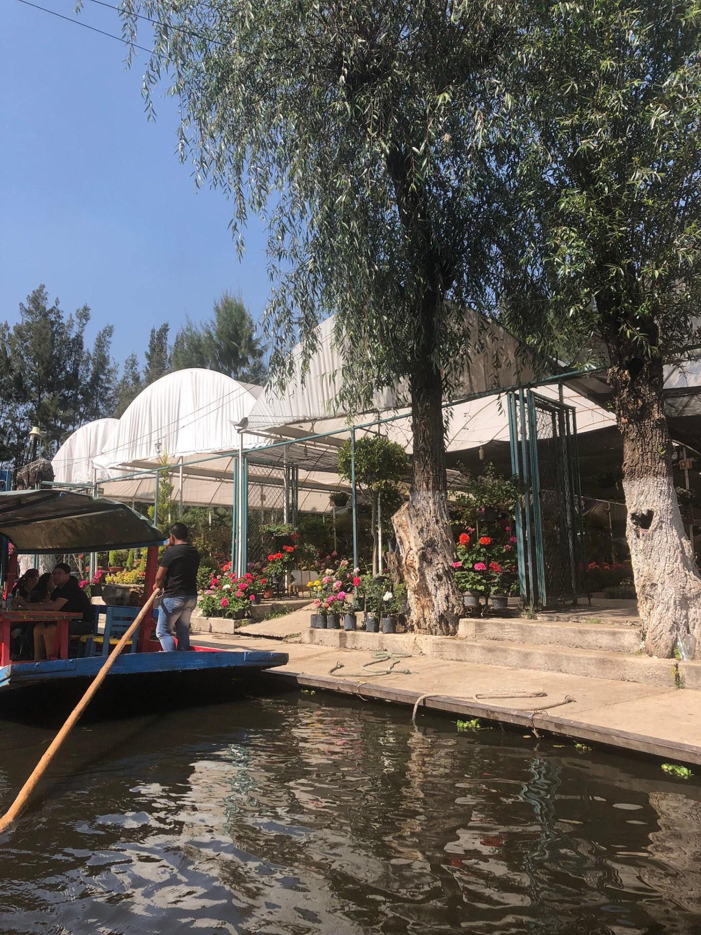 Gardens along Xochimilco, Mexico City
