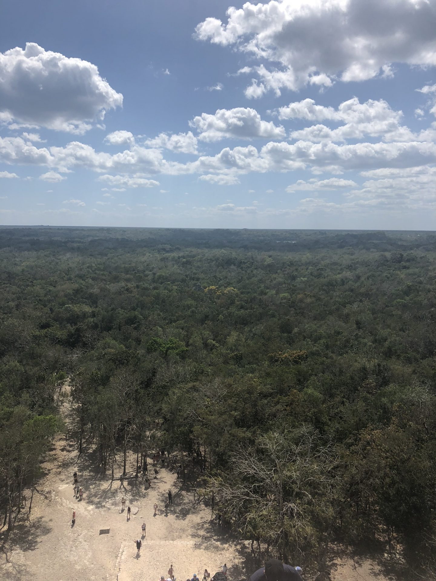 View from the top of the pyramid at Coba, Riviera Maya