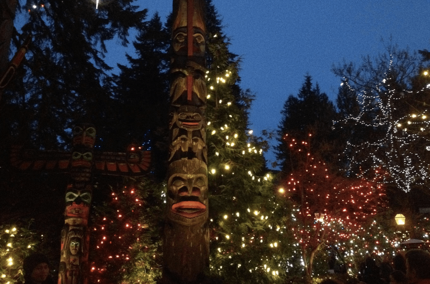 Canyon lights at Capilano Suspension Bridge, Vancouver