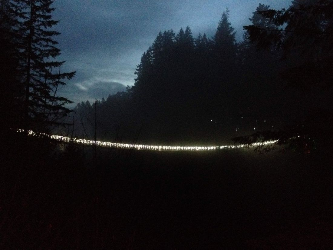 View of Capilano Suspension Bridge at Christmas