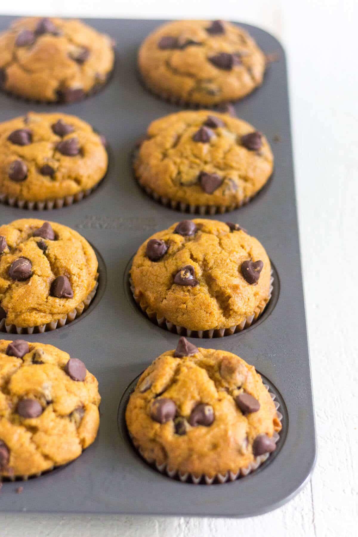gluten free pumpkin chocolate chip muffins