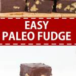 This easy paleo fudge comes together in a few minutes! It's made with coconut oil, coconut milk, honey and cocoa powder so it's dairy free, grain free and refined sugar free, making them a delicious paleo dessert!