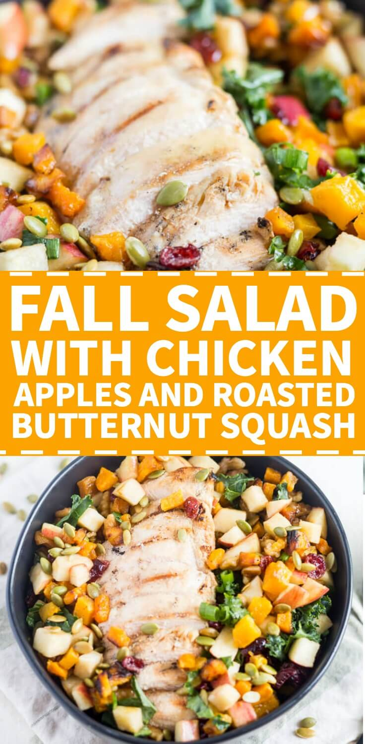 fall salad with chicken