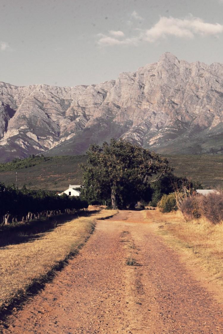 Rico Suter Country House - farm
