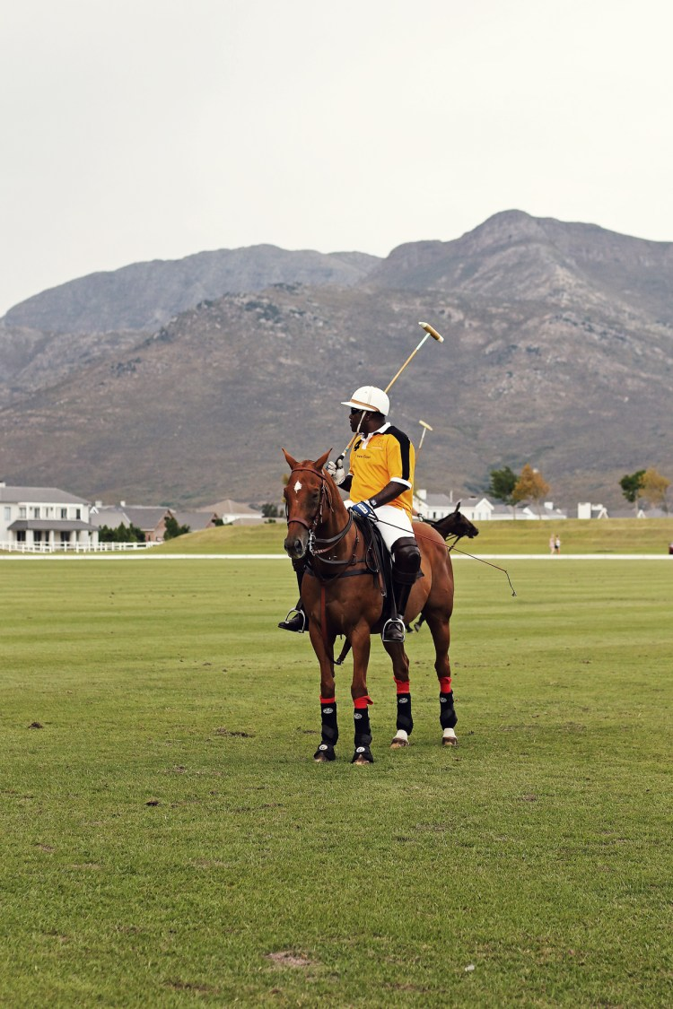 single-polo-player