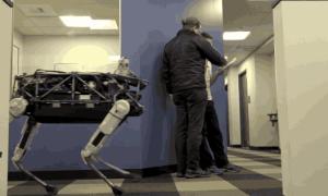 W imię nauki – Boston Dynamics znęca się nad robo-psem