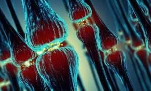 Odkryto mechanizm początków Alzheimera