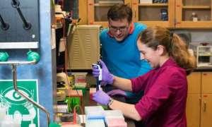 Nowy rekord ilości danych zapisanych na DNA
