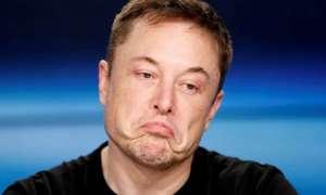 Pravduh.com, czyli plan Elona na poprawę jakości mediów