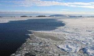 Oaza w Arktyce chroniła życie w czasie ostatniej epoki lodowcowej