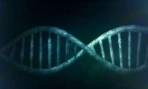 Długie życie może nie zależeć od genów