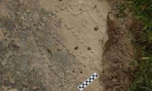 Niedawno odkryta gra planszowa ma ok. 4000 lat