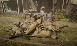 Pumy zalały Red Dead Online – o co chodzi z tym zwierzętami?