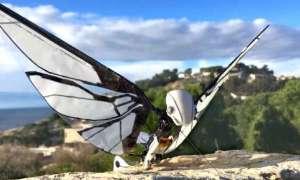 Na Kickstartera wleciał robotyczny owad MetaFly