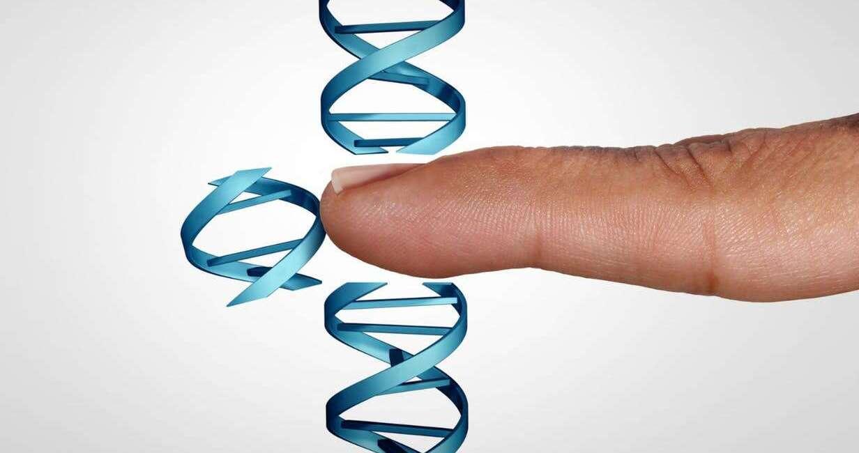 WHO, edycja genów, badania nad genami, WHO edycja genów, rejestr WHO, geny WHO, rejestr edycja genów