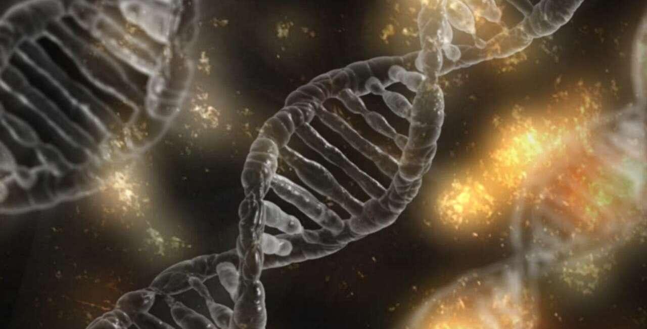 mikrobiom, geny, ludzkie geny, geny mikrobiom, geny bakterie, ludzkie bakterie