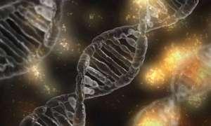 W ludzkim mikrobiomie jest więcej genów niż gwiazd we wszechświecie