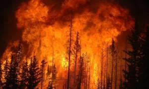 Rewolucja w reagowaniu na pożary w planach centrum SI Pentagonu