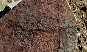 Naukowcy odkryli najwcześniejszą pieszą podróż na Ziemi