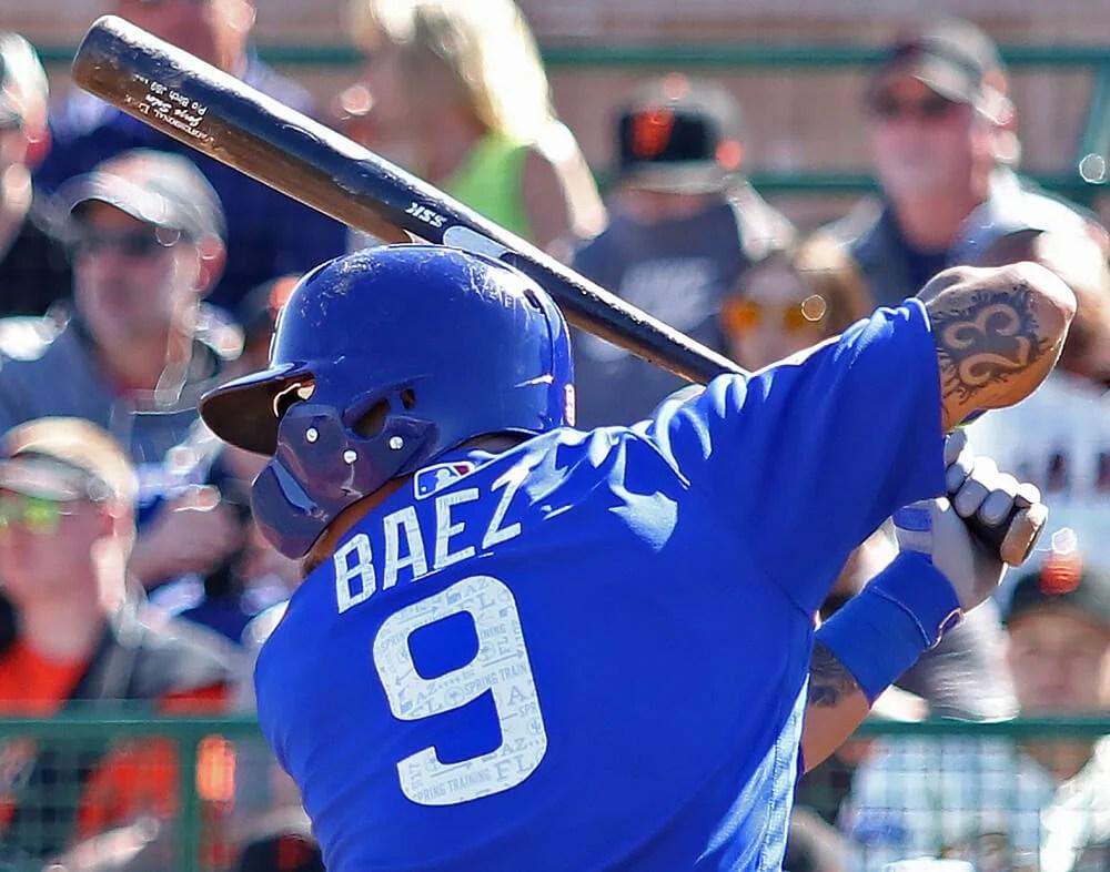 Javy Baez SSK Birch Bat