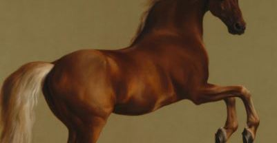 20 Stunning Horse Wall Art That Will Inspire You
