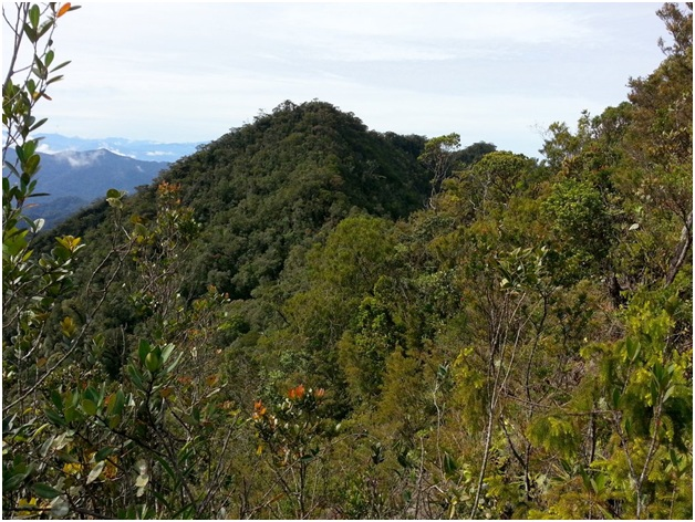 What is The National Mountain of Brunei?