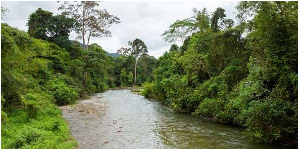 What is The National River of Brunei?