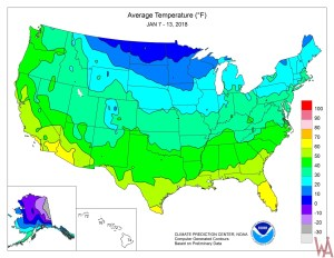 Average Temperature Map  of the United States January 2018